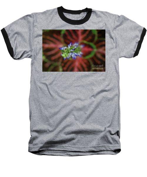 Rainbow Coleus Baseball T-Shirt