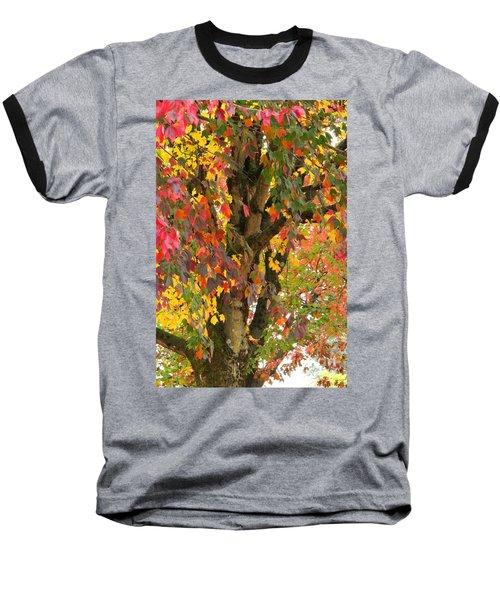 Rainbow Maple Baseball T-Shirt