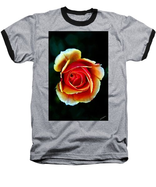 Rainbow Rose Baseball T-Shirt by John Haldane