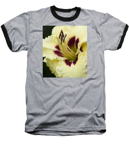 Raindrops On A Petal Baseball T-Shirt