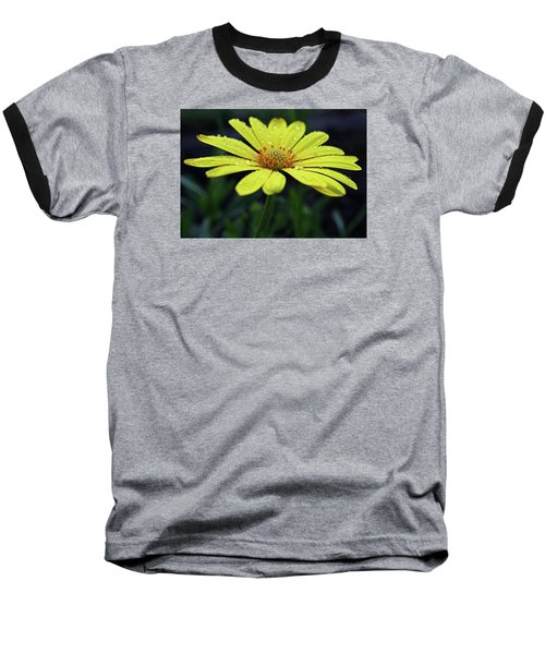 Baseball T-Shirt featuring the photograph Raindrops On Daisy by Judy Vincent