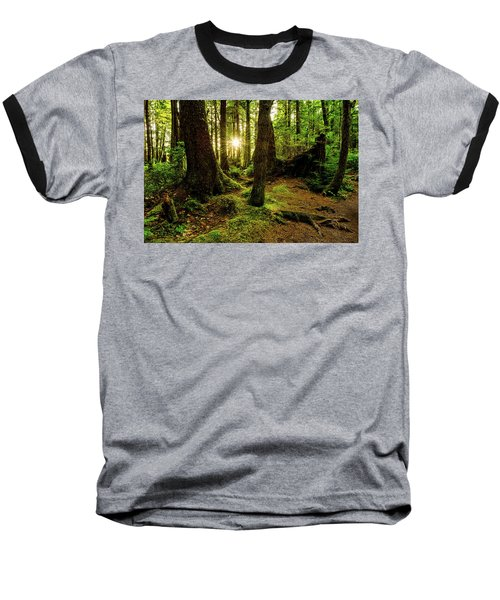 Rainforest Path Baseball T-Shirt by Chad Dutson