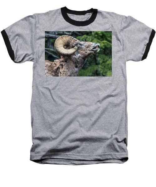 Ram Alert Baseball T-Shirt