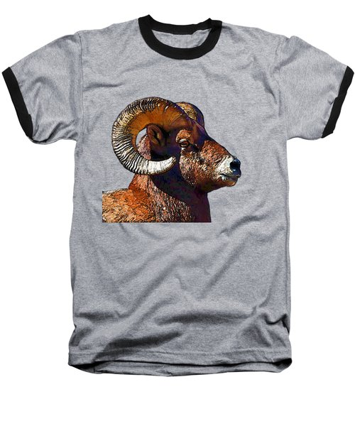 Ram Portrait - Rocky Mountain Bighorn Sheep By Olena Art Baseball T-Shirt