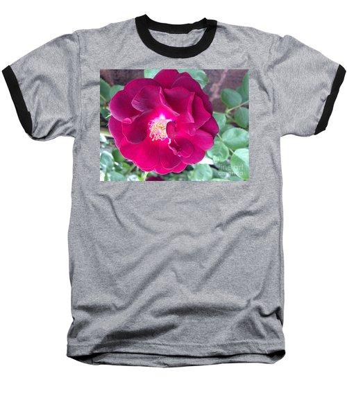 Rambling Rose Baseball T-Shirt