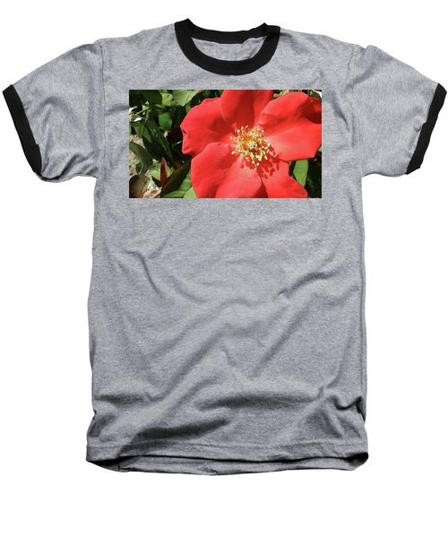 Baseball T-Shirt featuring the photograph Rambling Rose Watercolor by Donna G Smith