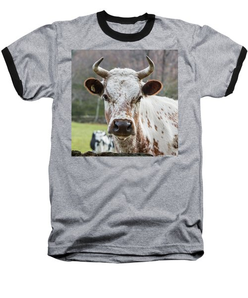 Baseball T-Shirt featuring the photograph Randall Cow by Bill Wakeley
