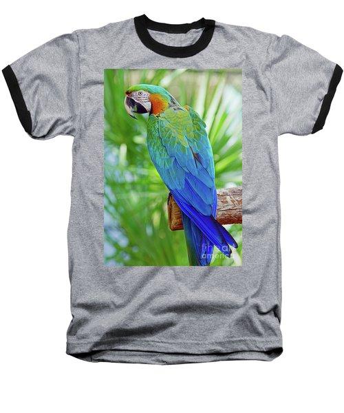 Rapsody In Blue Baseball T-Shirt