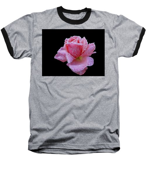 Rare Winter Rose Baseball T-Shirt