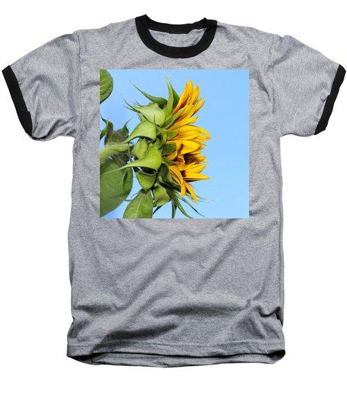 Reaching Sunflower Baseball T-Shirt