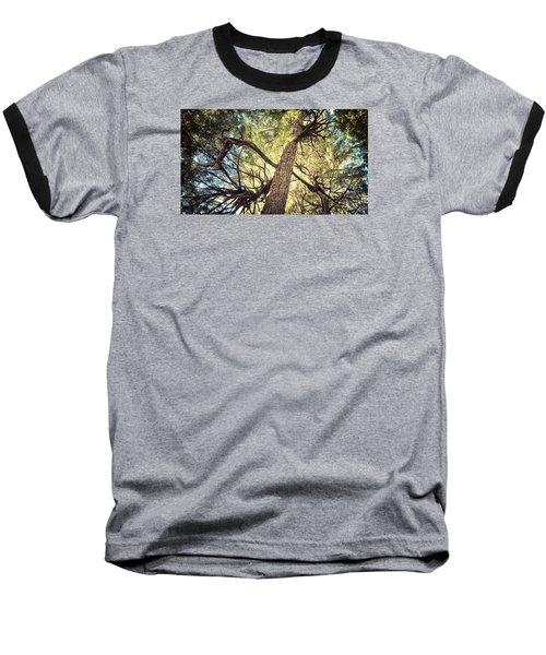 Reaching For Sun Baseball T-Shirt