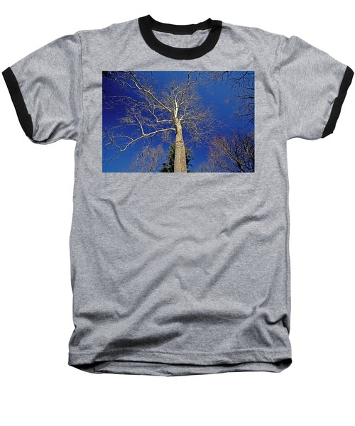 Baseball T-Shirt featuring the photograph Reaching For The Sky by Suzanne Stout
