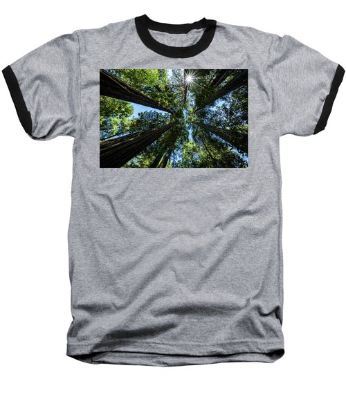 Reaching For The Sun Baseball T-Shirt