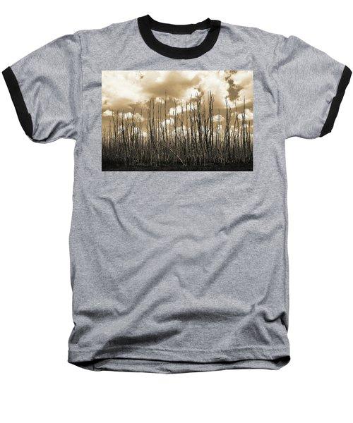 Reaching To The Sky Baseball T-Shirt