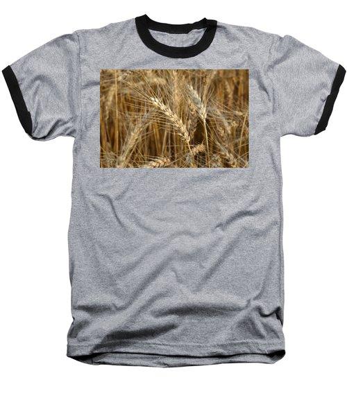 Ready For Harvest Baseball T-Shirt