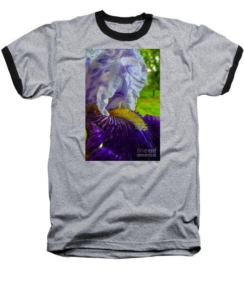 Recollection Spring 4 Baseball T-Shirt