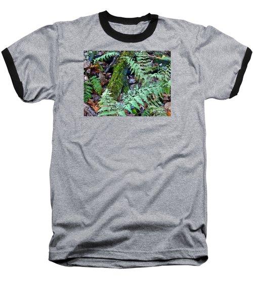 Record Warmth Baseball T-Shirt by Betsy Zimmerli