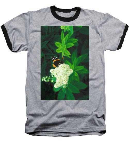 Red Admiral On Spirea Baseball T-Shirt