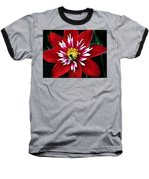 Red And White Flower With Bee Baseball T-Shirt