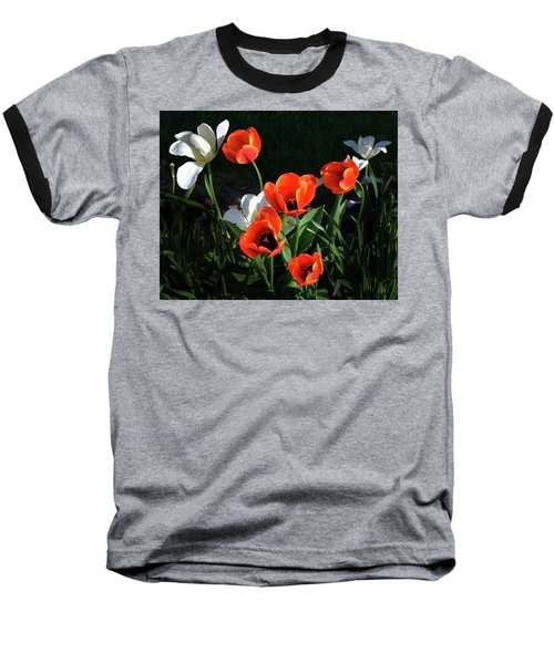 Red And White Tulips Baseball T-Shirt by Kathleen Stephens