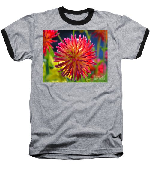 Red And Yellow Dahlia Baseball T-Shirt