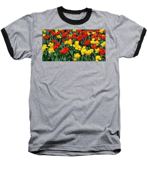 Red And Yellow Tulips  Naperville Illinois Baseball T-Shirt by Michael Bessler