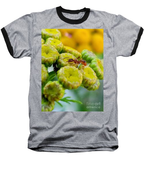 Red Ant Baseball T-Shirt