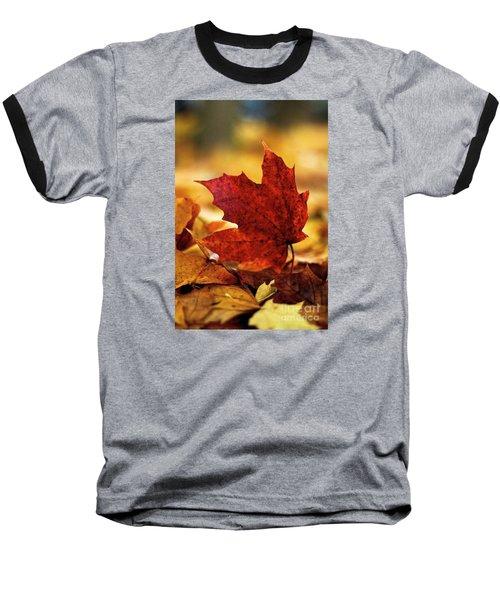 Red Autumn Baseball T-Shirt by Gary Bridger