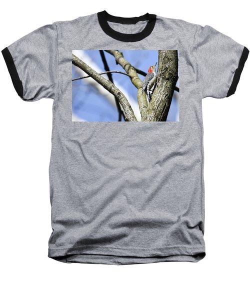 Red-bellied Woodpecker Baseball T-Shirt by Gary Wightman