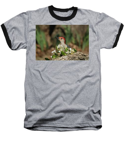 Red-bellied Woodpecker In Spring Baseball T-Shirt by Sheila Brown