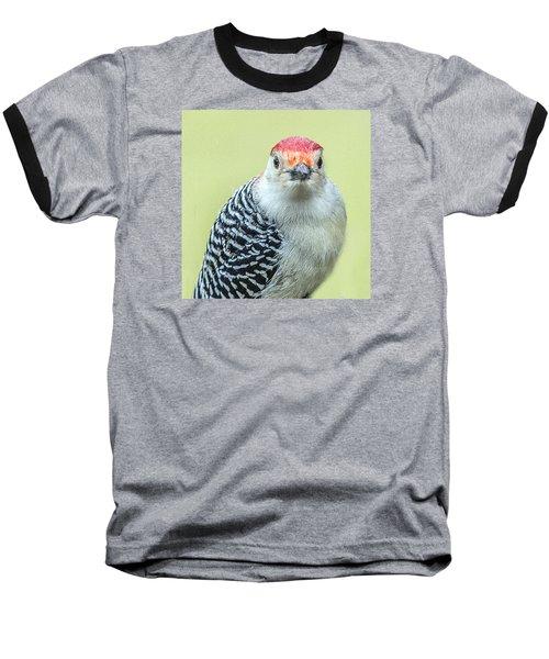 Red Bellied Woodpecker Portrait Baseball T-Shirt