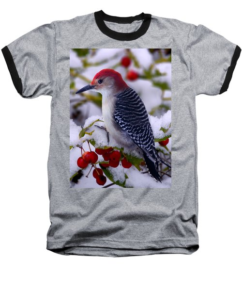 Red Bellied Woodpecker Baseball T-Shirt