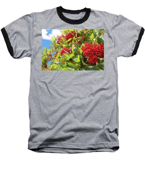Red Berries, Blue Skies Baseball T-Shirt
