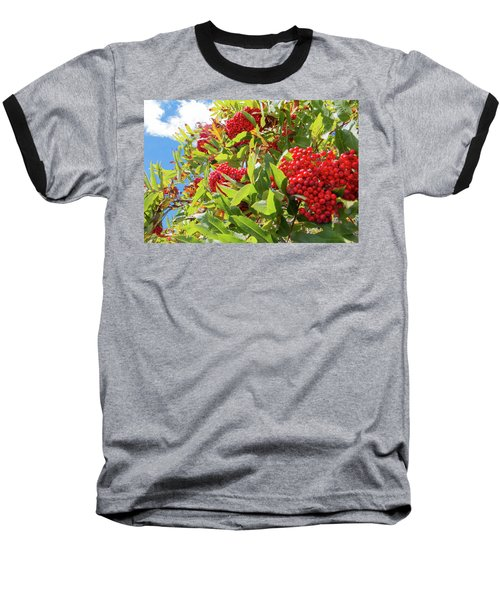 Red Berries, Blue Skies Baseball T-Shirt
