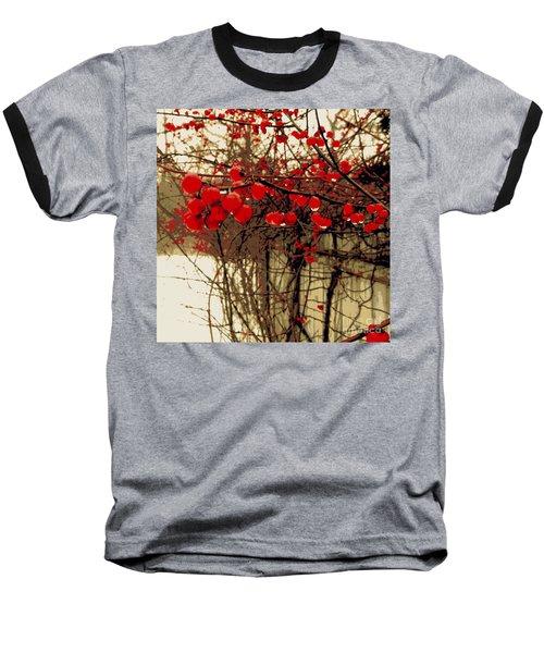 Red Berries In Winter Baseball T-Shirt by Susan Lafleur