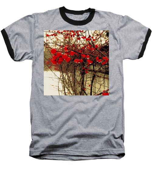Red Berries In Winter Baseball T-Shirt