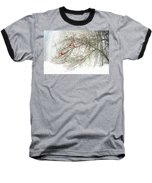 Red Bird Convention Baseball T-Shirt