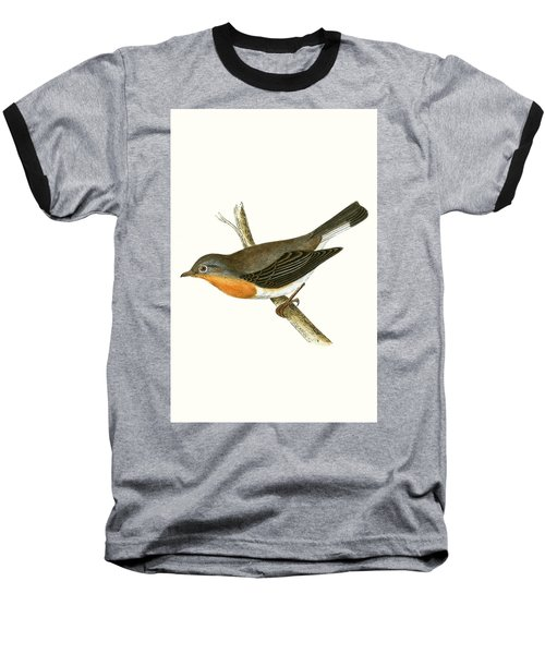 Red Breasted Flycatcher Baseball T-Shirt by English School