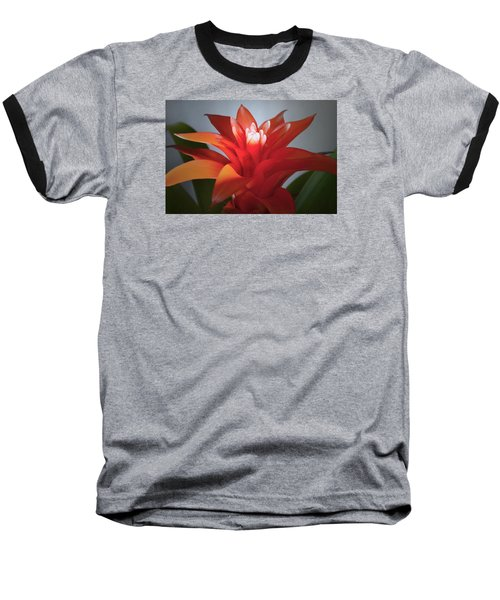 Red Bromeliad Bloom. Baseball T-Shirt by Terence Davis