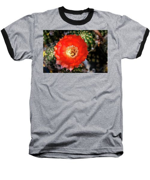 Red Cactus Bloom Baseball T-Shirt