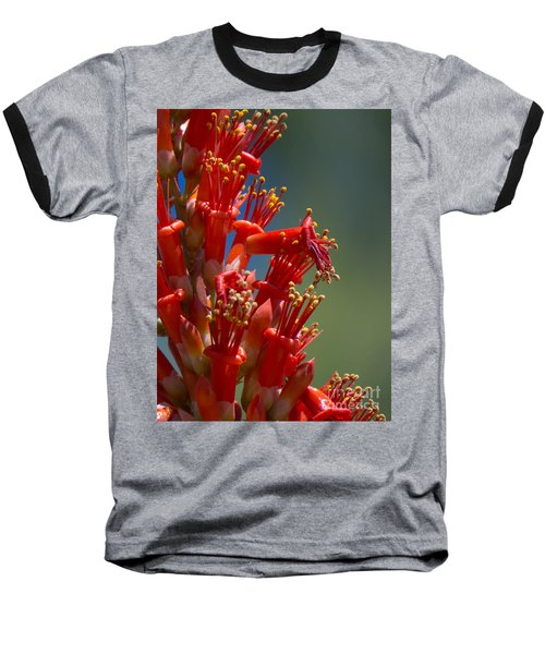 Red Cactus Flower 1 Baseball T-Shirt