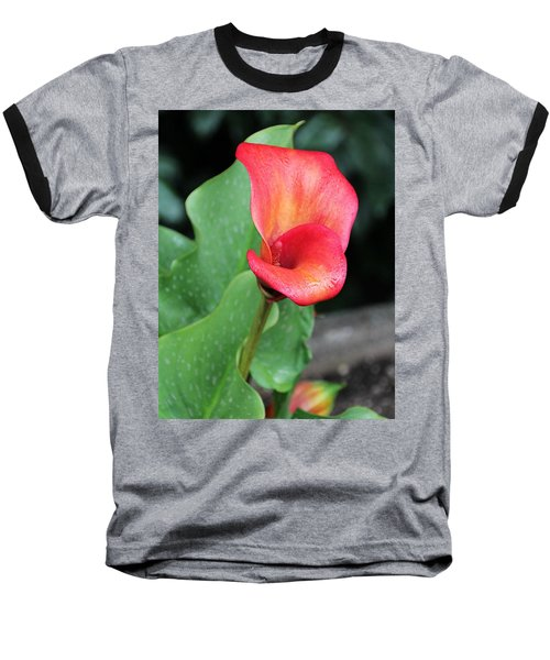 Red Calla Lily Baseball T-Shirt