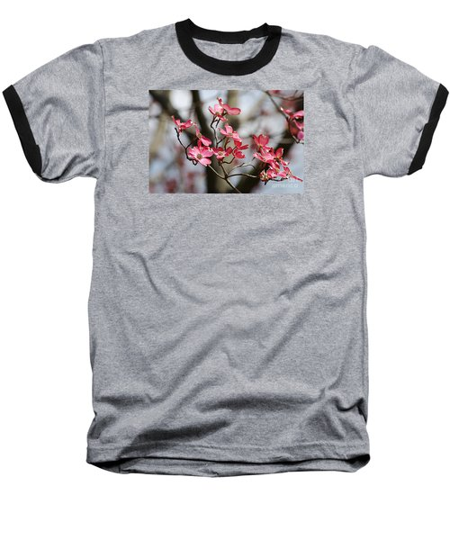 Baseball T-Shirt featuring the photograph Red Cloud Dogwood 2012410_90a by Tina Hopkins