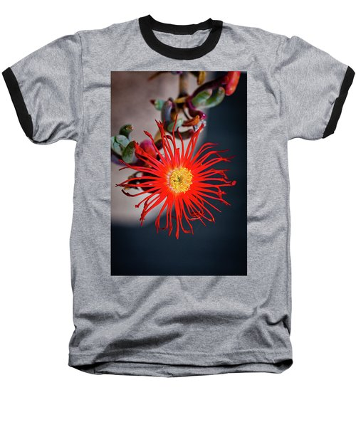 Red Crab Flower Baseball T-Shirt