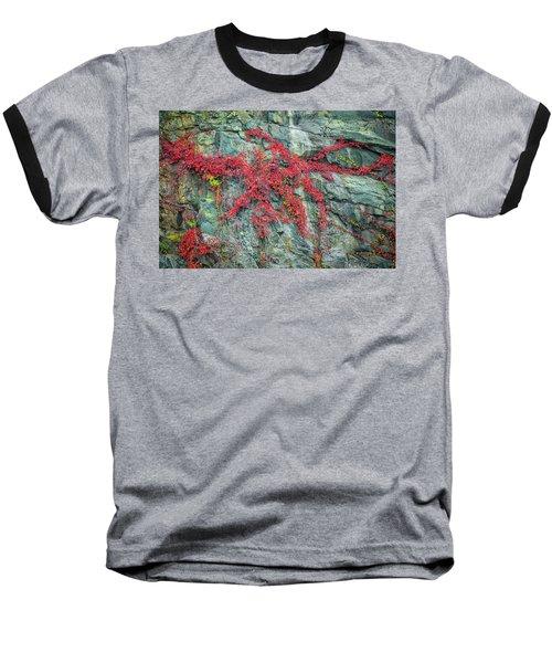 Red Creeper Baseball T-Shirt by David Cote