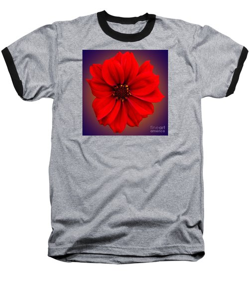Baseball T-Shirt featuring the photograph Red Dahlia-bishop-of-llandaff by Brian Roscorla