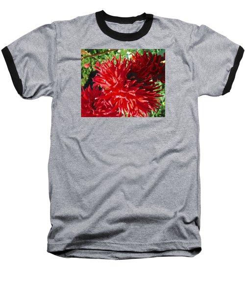 Red Dahlia Pizazz  Baseball T-Shirt