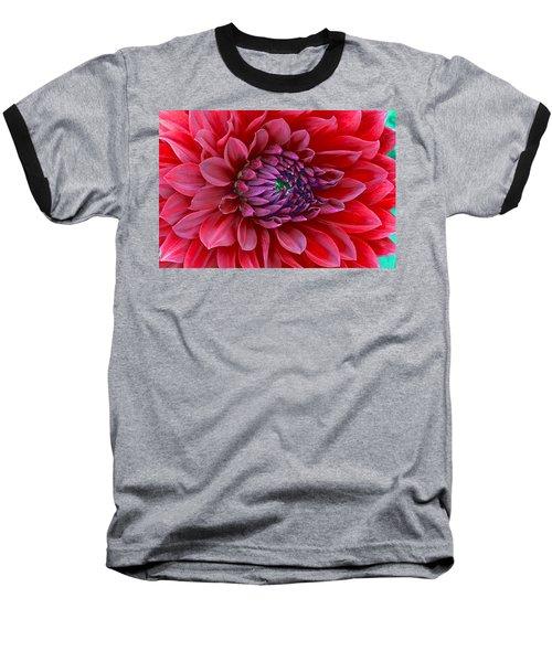 Red Dalia Up Close Baseball T-Shirt