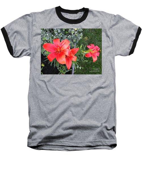 Red Day Lilies Baseball T-Shirt