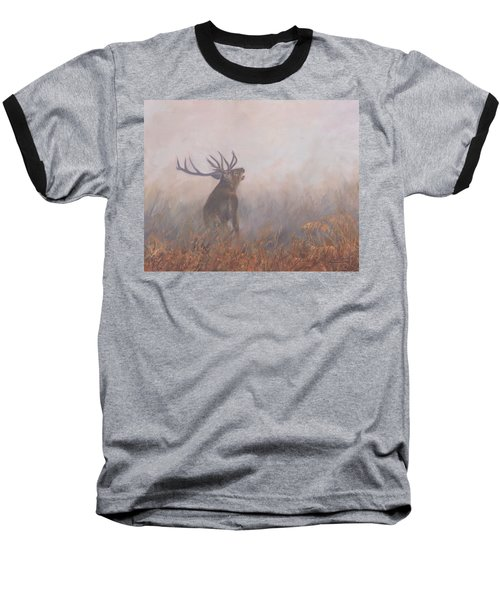 Red Deer Stag Early Morning Baseball T-Shirt by David Stribbling